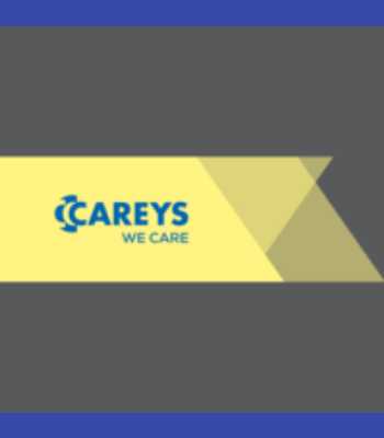 Carey's Civil Engineering